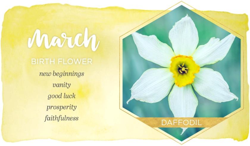 march-birthmonth-flower